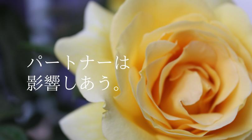 パートナーの影響 乙女座の新月