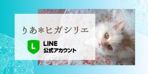 ヒガシリエ(りあ)公式LINE